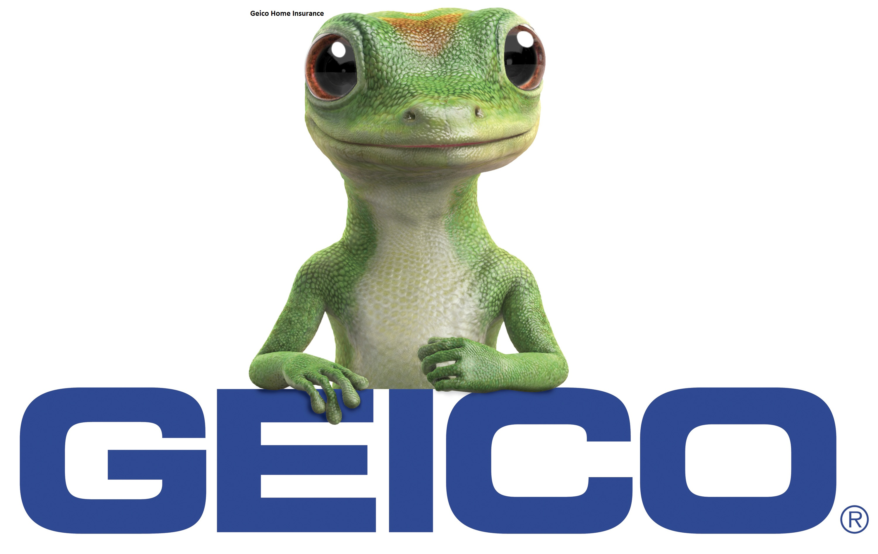 Geico Home Insurance Quote New Geico Home Insurance For Builders Risk And Vacant House