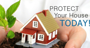 Best homeowners insurance options